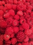 berry three